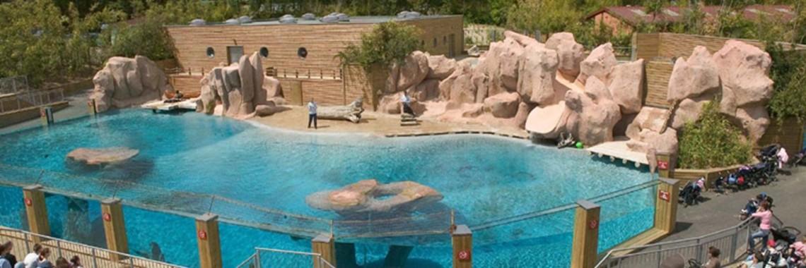 Zoo d'Amnéville – La baie des lions de Mer