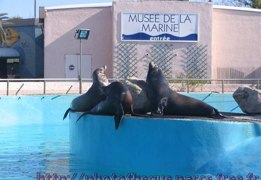 Marineland - Autres photos