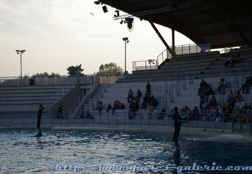 Marineland - Dauphins - Spectacle - 17h30