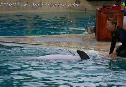 Marineland Antibes - 001