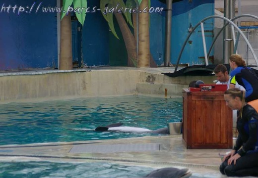Marineland Antibes - 002