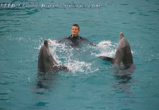 Marineland - Dauphins - Spectacle 14h15