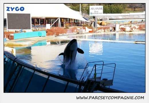 Marineland - Orques - Spectacle - 0281