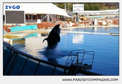 Marineland - Orques - Spectacle - 0282