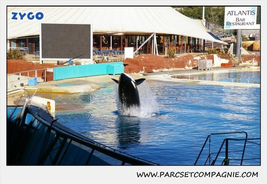 Marineland - Orques - Spectacle - 0283