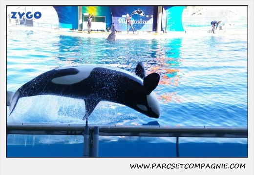 Marineland - Orques - Spectacle - 0286