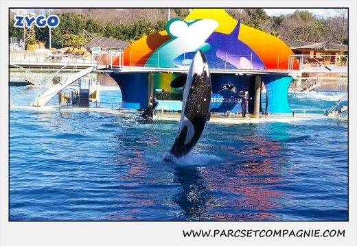 Marineland - Orques - Spectacle - 0287