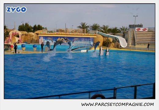 Marineland - Dauphins - Spectacle 17h45