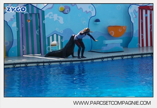 Marineland - Otaries - Spectacle - 4315