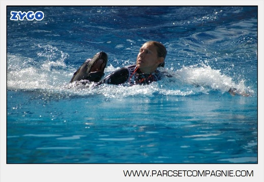 Marineland - Otaries - Spectacle - 4316