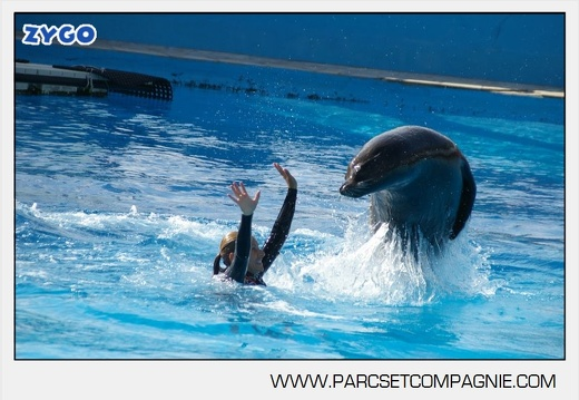 Marineland - Otaries - Spectacle - 4317