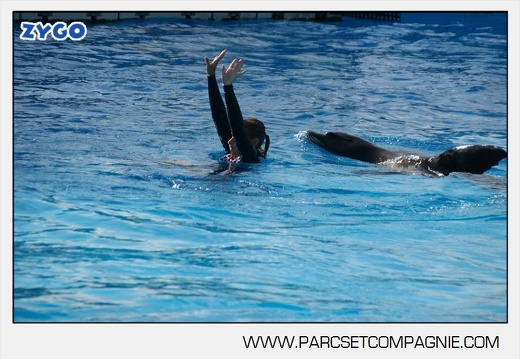 Marineland - Otaries - Spectacle - 4319