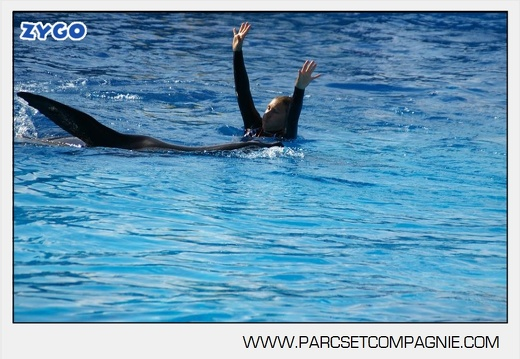 Marineland - Otaries - Spectacle - 4320