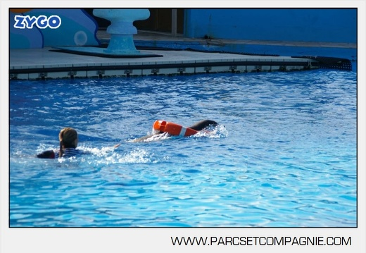 Marineland - Otaries - Spectacle - 4322