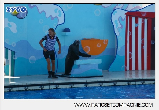 Marineland - Otaries - Spectacle - 4323