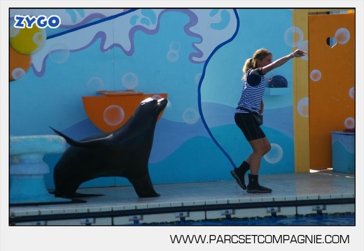 Marineland - Otaries - Spectacle - 4324