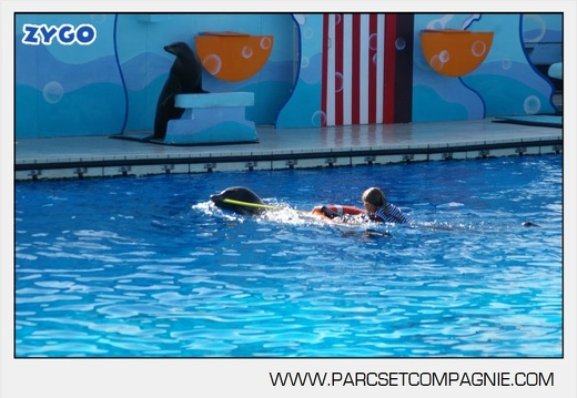 Marineland - Otaries - Spectacle - 4325