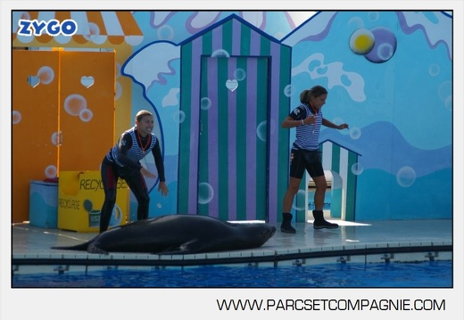 Marineland - Otaries - Spectacle - 4327