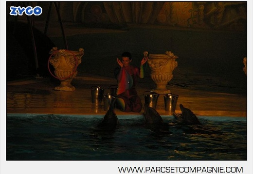 Marineland - Dauphins - Spectacle nocturne