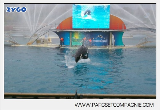 Marineland - Orques - Spectacle