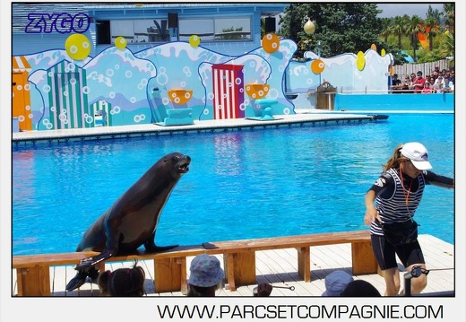 Marineland - Otaries - Spectacle 13h00 - 5562