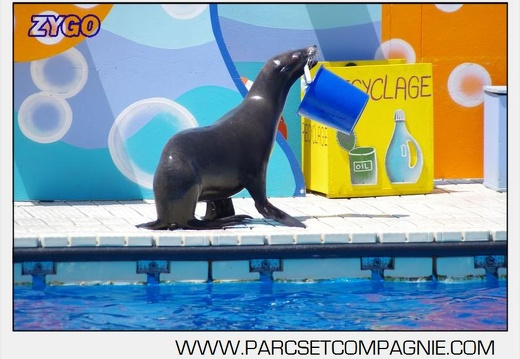 Marineland - Otaries - Spectacle 13h00 - 5563