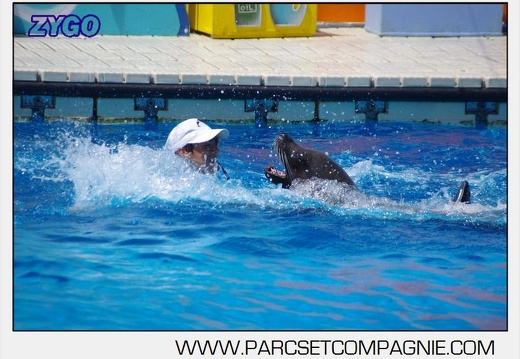 Marineland - Otaries - Spectacle 13h00 - 5565