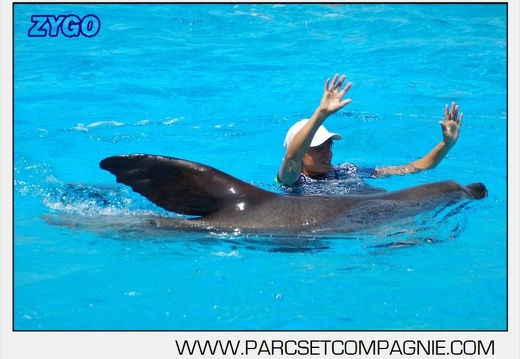 Marineland - Otaries - Spectacle 13h00 - 5566