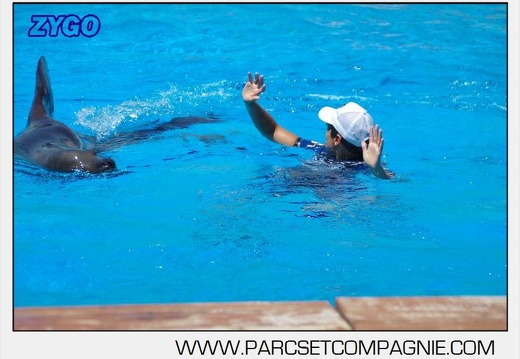 Marineland - Otaries - Spectacle 13h00 - 5567