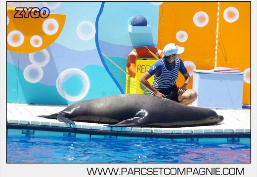 Marineland - Otaries - Spectacle 13h00 - 5572