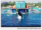 Marineland - Orques - Spectacle - 6501