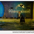 Marineland_-_Orques_-_Spectacles_nocturne_-_5986.jpg